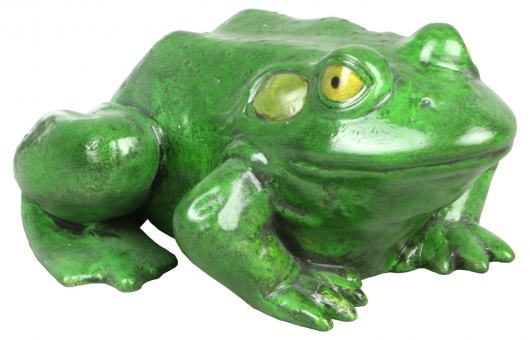 Frosch 'Froggi'