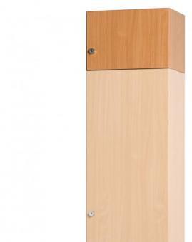 Aufsatzschrankkorpus 300 x 450 x 720 mm mit Tür ohne Einlegeböden